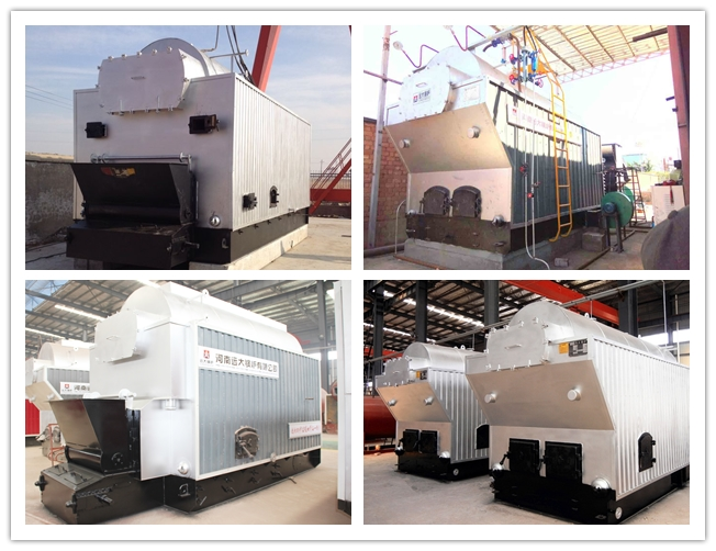 Paper Plant Biomass Fired Steam Boiler 6 Ton / H Coal Fired Steam Boiler