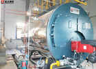 WNS Horizontal Oil Fuel 10 Ton Industrial Steam Boiler Diesel For Tobacco
