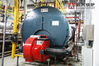 Duel Fuel Diesel Steam Boiler / Carton Cardboard Factory Gas Fired Steam Boiler