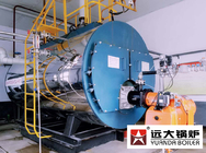 China Horizontal Natural Gas Steam Boiler 4Thr For Pasteurized Milk factory